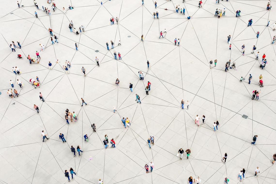 relazione tra microbiota e cervello sociale
