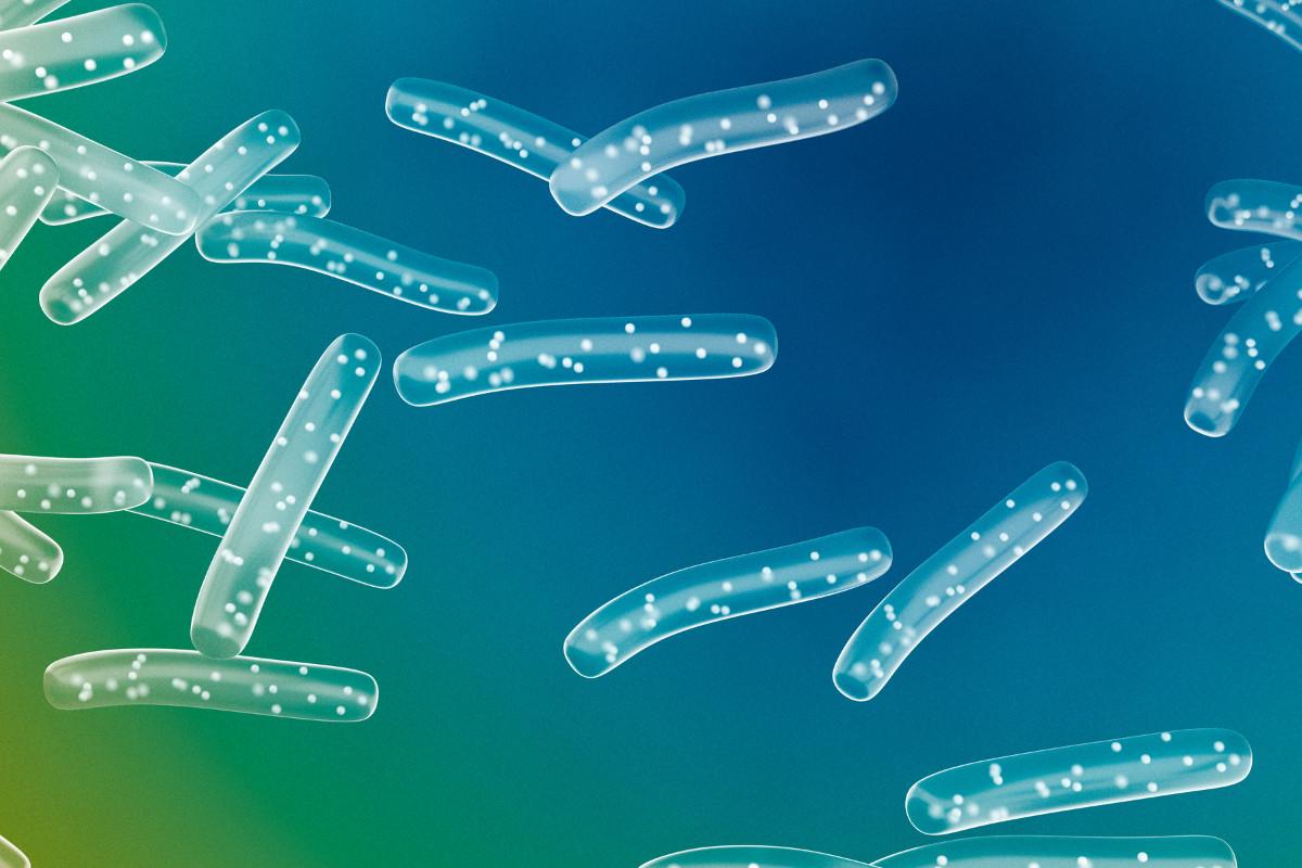 Lactobacillus Plantarum PS128 potrebbe migliorare i livelli di stress uno studio Taiwanese